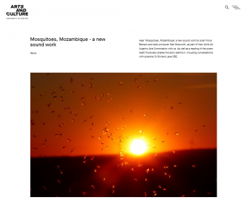 "Image for the ""Mosquitoes, Mozambigue"" sound work"