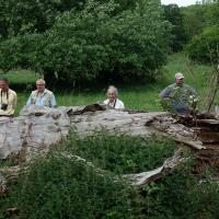 Members of Northants and Peterborough Diptera Group and Dipterists Forum at Yardley Chase MoD during Spring 2017 Field Meeting. From left to Right: Rob Wolton, Roger Morris, Alan Stubbs, Jeff Blincow and Graham Warnes
